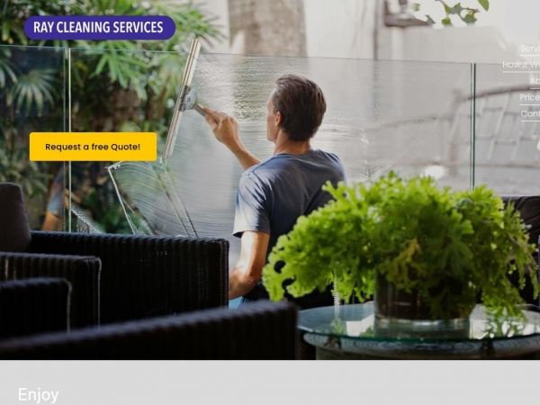 ray-cleaning.com