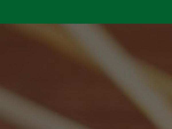 satezul.com