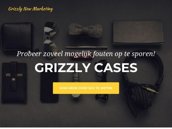 cases.grizzly.marketing