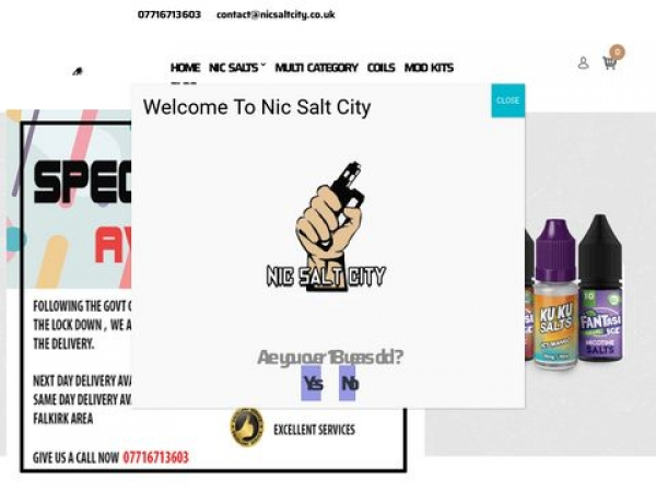 nicsaltcity.co.uk